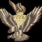 Eagle Awards Medal