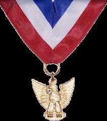 Distinguished Eagle Scout Medal