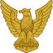 Gold Eagle Scout